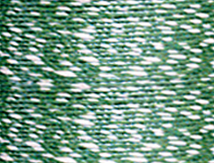 green-white.jpg